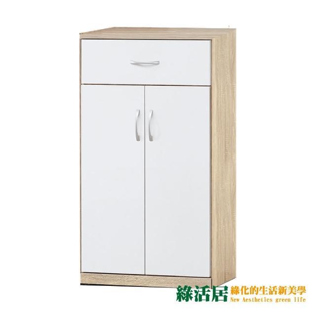 【綠活居】蕾比  時尚2尺木紋二門鞋櫃/玄關櫃(四色可選)