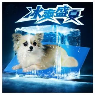 【寵物愛家】寵物涼爽冰墊春夏專用-M(寵物冰涼墊)