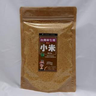 台灣小米有機轉型期300g(台灣小米)