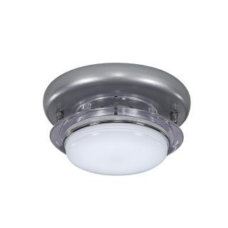 【華燈市】快可換 時尚銀 吸頂單燈(時尚現代風)