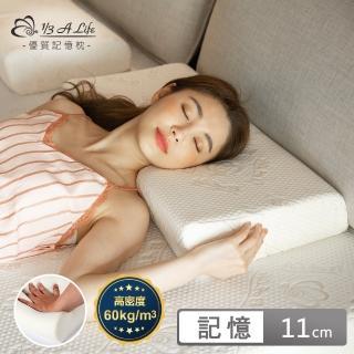 【1/3 A LIFE】天絲恆溫抗菌-按摩側睡模塑枕(枕皇2入)