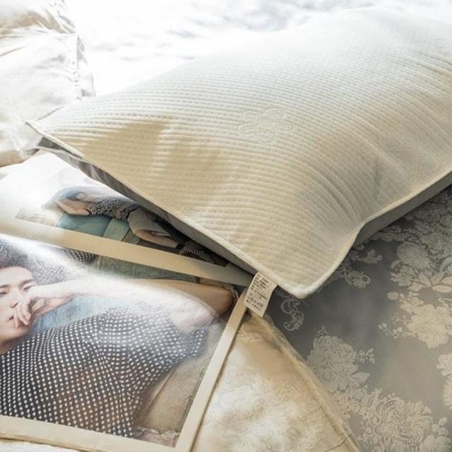 【棉床本舖】〔防水〕枕頭的防水透氣保潔墊