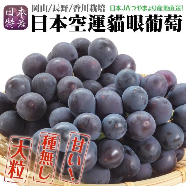 【WANG 蔬果】日本岡山貓眼葡萄原裝(1房/約700g±10%含盒重)