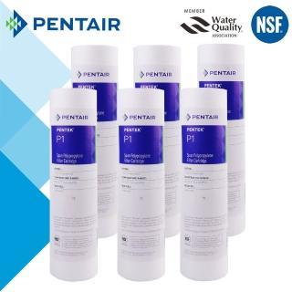 【怡康】PENTAIR 標準10吋1微米PP棉濾芯-6支組