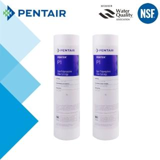【怡康】PENTAIR 標準10吋1微米PP棉濾芯-2支組