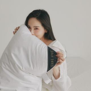 【翔仔居家】高品質飯店級質感 30/70羽絨枕(2入-台灣製)