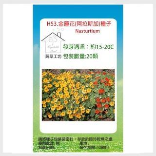 【蔬菜工坊】H53.金蓮花種子20顆(阿拉斯加)