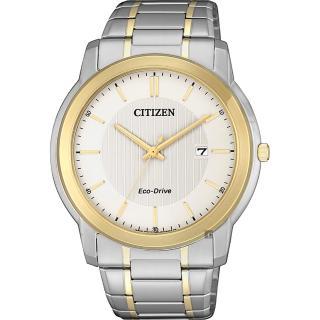 【CITIZEN 星辰】Eco-Drive 光動能城市手錶-雙色版/42mm(AW1216-86A)