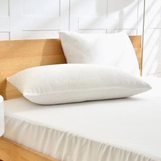 【La Belle】《簡約素雅》天絲防蹣抗菌透氣防水信封式保潔枕套(2入)