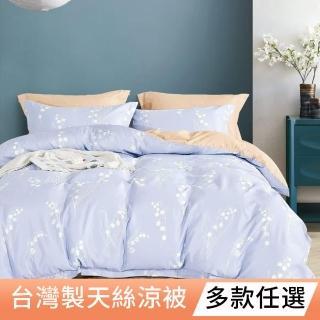 【A-ONE】雪紡棉 雙人鋪棉四季被一件組-合版G