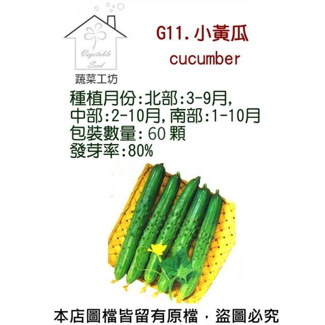 【蔬菜工坊】G11.小黃瓜種子