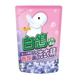 【白鴿】天然濃縮抗菌洗衣精 迷人小蒼蘭香氛-補充包2000g