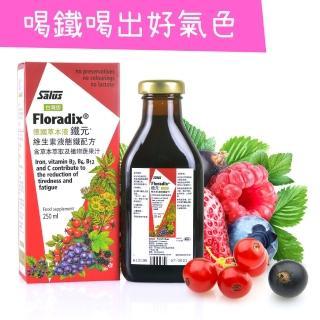 【歐洲屋】德國草本液-Floradix鐵元250ml(天然植物二價鐵)
