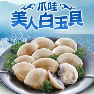 野生捕撈新鮮熟凍大白玉蛤
