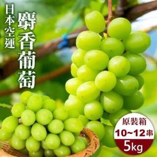 【WANG 蔬果】日本麝香綠葡禮盒(1串入/每串約500-550g±10%)