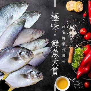 【頤珍鮮物】極致雙倍美味12尾入(鱸魚*4午仔魚*4金鯧魚*4)