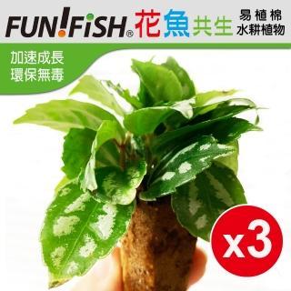 【FUNFISH
