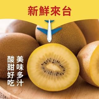 【水果達人】紐西蘭超大顆黃金奇異果11-13顆禮盒*1箱(黃金奇異果)(水果禮盒)