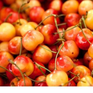 【RealShop 真食材本舖】華盛頓西北白櫻桃 4kg/9R
