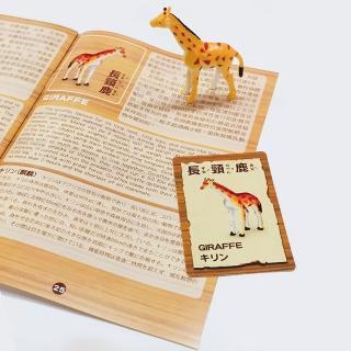 【Kiddy Kiddo綺迪樂】兩入組-諾亞方舟+恐龍歷險記(恐龍、動物、益智派對桌遊)