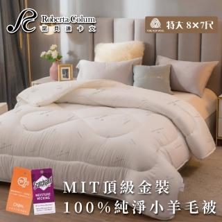 【Aaron 艾倫生活家】MIT-頂級金裝4.1kg100%純淨小羊毛被-諾貝達卡文(特大)