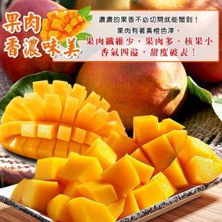 【禾鴻】屏東枋山阿憲山頂上的愛文芒果18-24顆(10斤x1箱)